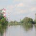Park w Wilnowie. Fot. A. Bobryk