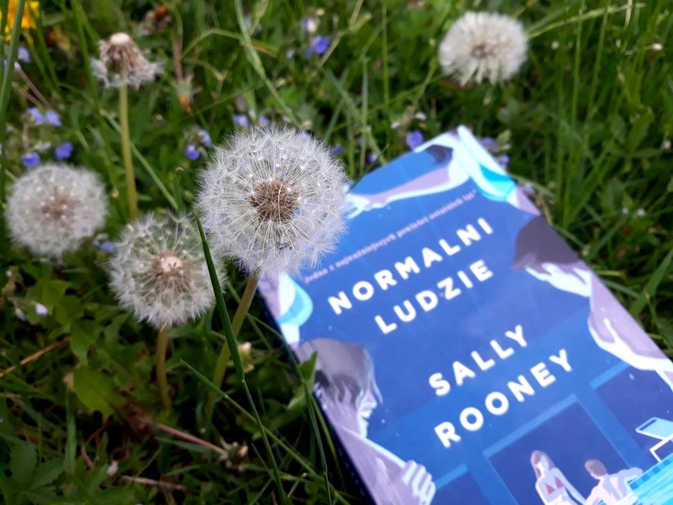Na zdjęciu dmuchawiec, książka Normalni ludzie Sally Rooney z niebieską okładką